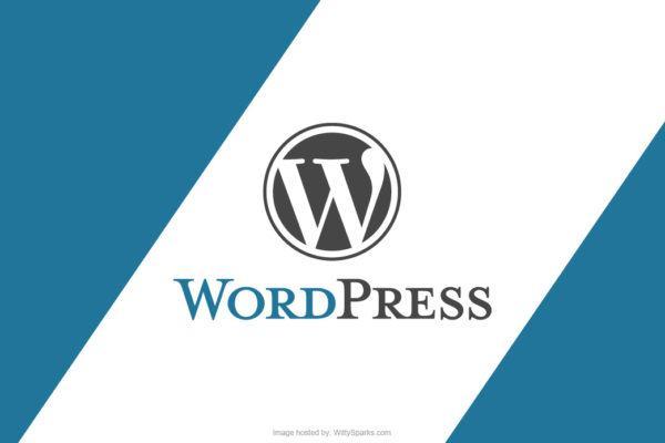 wordpress plugins themes cms 600x400 - 16 bước để học phát triển WordPress như một chuyên gia