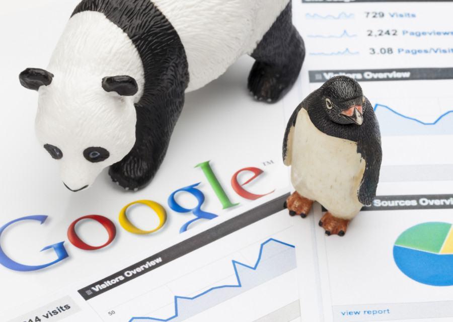 Google panda trong seo