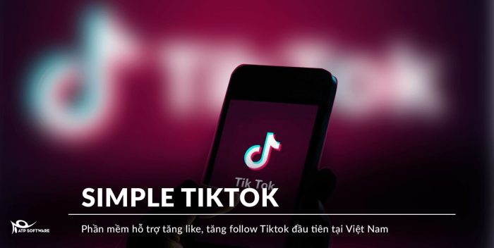 simple-tiktok-2