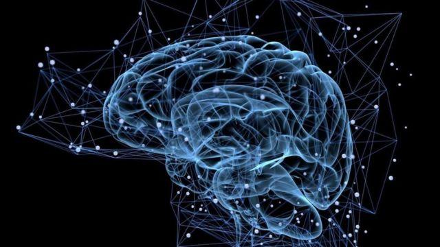 Những bộ não tạo từ da người - BBC News Tiếng Việt