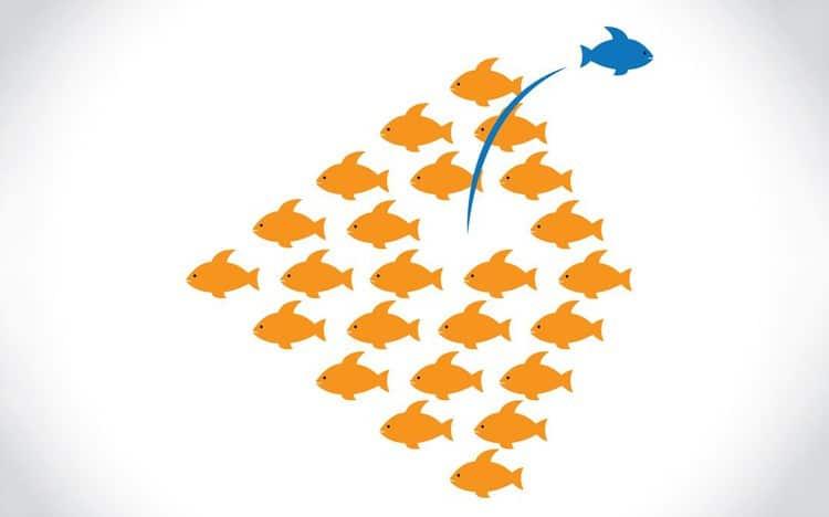 Xây dựng sự khác biệt để tạo nên lợi thế cạnh tranh — Chia Sẻ Hay